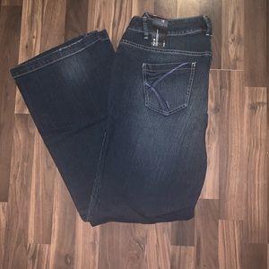 Lane Bryant Flare Jeans